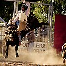 Awesome Rodeo - Upper Horton NSW by wildfillies