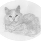PRECIOUS FOR SHERRI - Sketch 6 in series of Friend´s Pets by LadyE