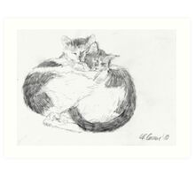 Sleeping cats 1 Art Print