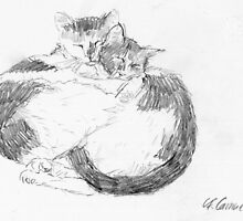 Sleeping cats 1 by Franko Camue