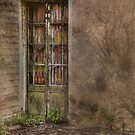 Callan Park Doorway 319 by Dianne English
