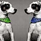 Dog portrait by Christinaanaya