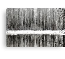 Whites of Winter  Canvas Print