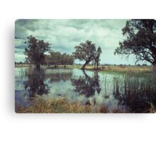 Rains in the King valley 1 Canvas Print