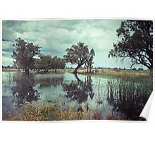 Rains in the King valley 1 Poster