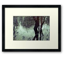 Rains in the King valley 3 Framed Print