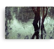 Rains in the King valley 3 Canvas Print