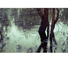 Rains in the King valley 3 Photographic Print