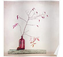 Wild rosehips in a bottle Poster