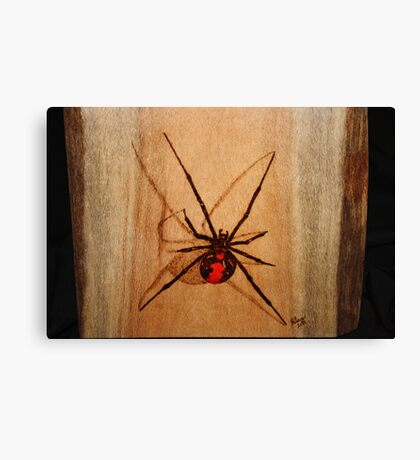 Australian Redback Canvas Print