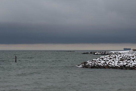 Winter Sea by Lynn Wiles