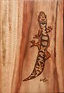 Australian Fat-tail Gecko by aussiebushstick
