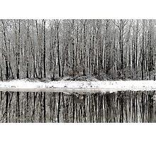 Whites of Hatzic Photographic Print