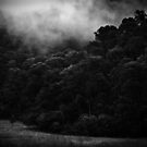 mountains after rain.... by BrainCandy