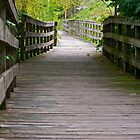 long boardwalk by Mark de Jong