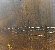 Country Fence ..Misty Style by peaceofthenorth