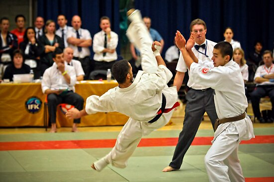 fight 1 by Sebastian Chalupa