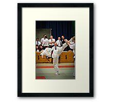 Fight 2 Framed Print