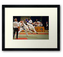 fight 3 Framed Print