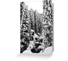 winter snow in northern land (vertical) Greeting Card