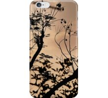 Peaceful sunset iPhone Case/Skin