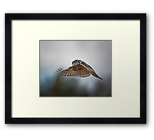 Who Am I   Framed Print