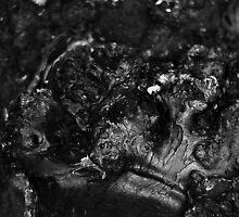 Abstract wood by Sarah Horsman
