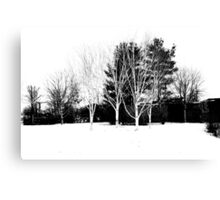 snow black and white Canvas Print