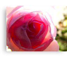 Garden Sun Rose Canvas Print