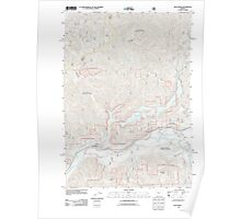 USGS Topo Map Oregon Blue River 20110721 TM Poster
