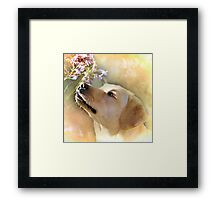 Rosie and the Bee Framed Print