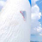 A breez in the wind by tyronmcd