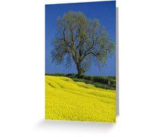 The Oak Tree Greeting Card
