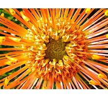 Orange star  Photographic Print