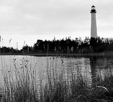#463    Lighthouse In Cape May by MyInnereyeMike