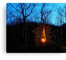 Hillbilly Fireplace Canvas Print