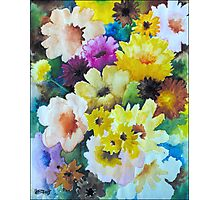 CHRYSANTHEMUMS AND ASTERS - AQUAREL Photographic Print