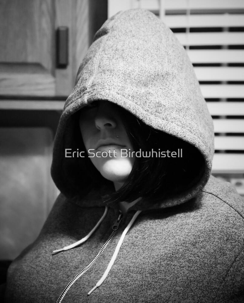 Assassino by Eric Scott Birdwhistell