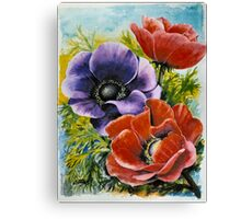 ANEMONES - AQUAREL Canvas Print