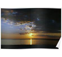 Gulf Rays Poster