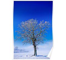 Snowlight Poster