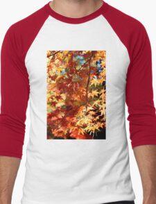 Autumn Colours 9 Men's Baseball ¾ T-Shirt