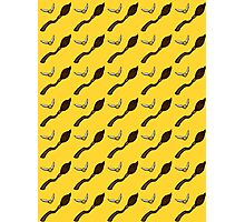Quidditch Pattern (Hufflepuff) Photographic Print