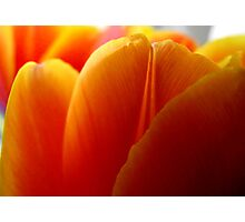 Triple Layer of Orange Photographic Print