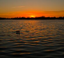Sunset over the water, opened by David Attenborough by Elaine123