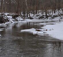 Snowy stream by JennySue