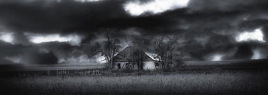 Home on the Range # 2 by dvande1