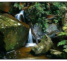 Wentworth Falls, Blue Mountains. by Mike Buick