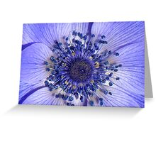 The Heart of a Purple Poppy Anemone Greeting Card