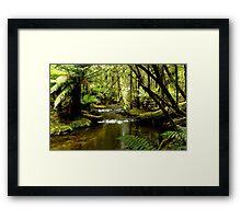 Enchanting Framed Print